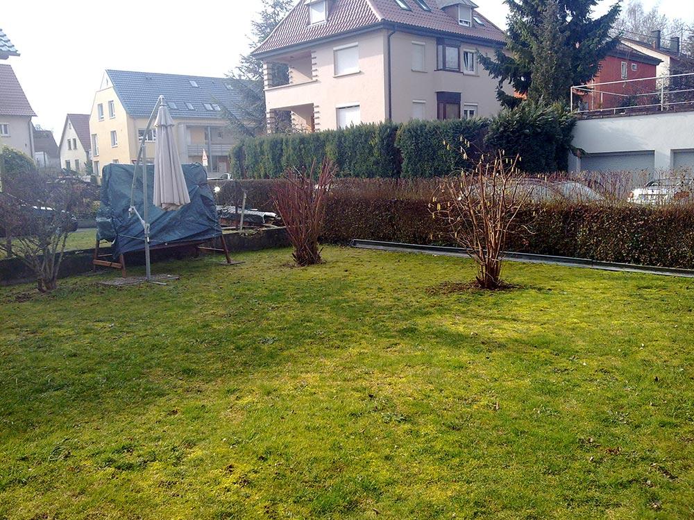 Umgestaltung einer Gartenanlage mit Holzdeck und Teich ...